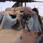 Чем опасны птицы для вертолетов